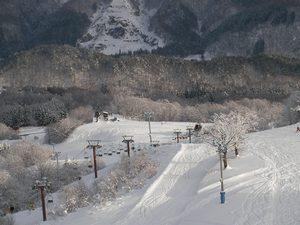 2008_0104_02.jpg