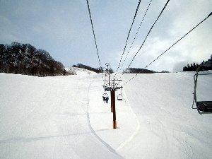 2008_0114_01.jpg