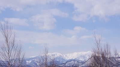 20110309_03.jpg