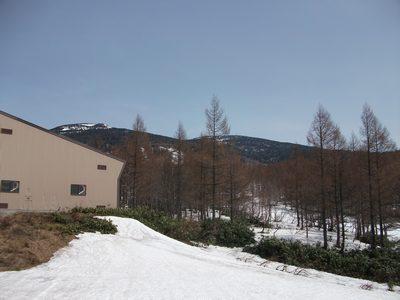 20110505_02.jpg